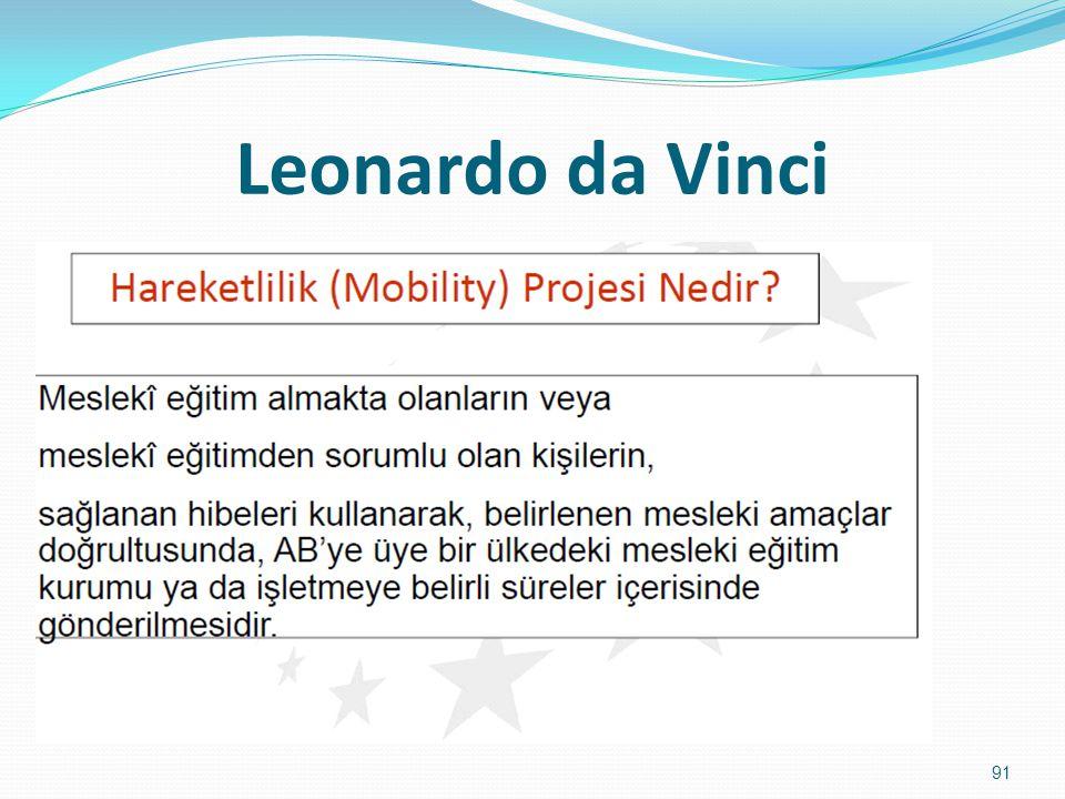 Leonardo da Vinci 91