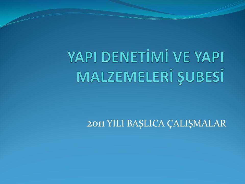 2011 YILI BAŞLICA ÇALIŞMALAR