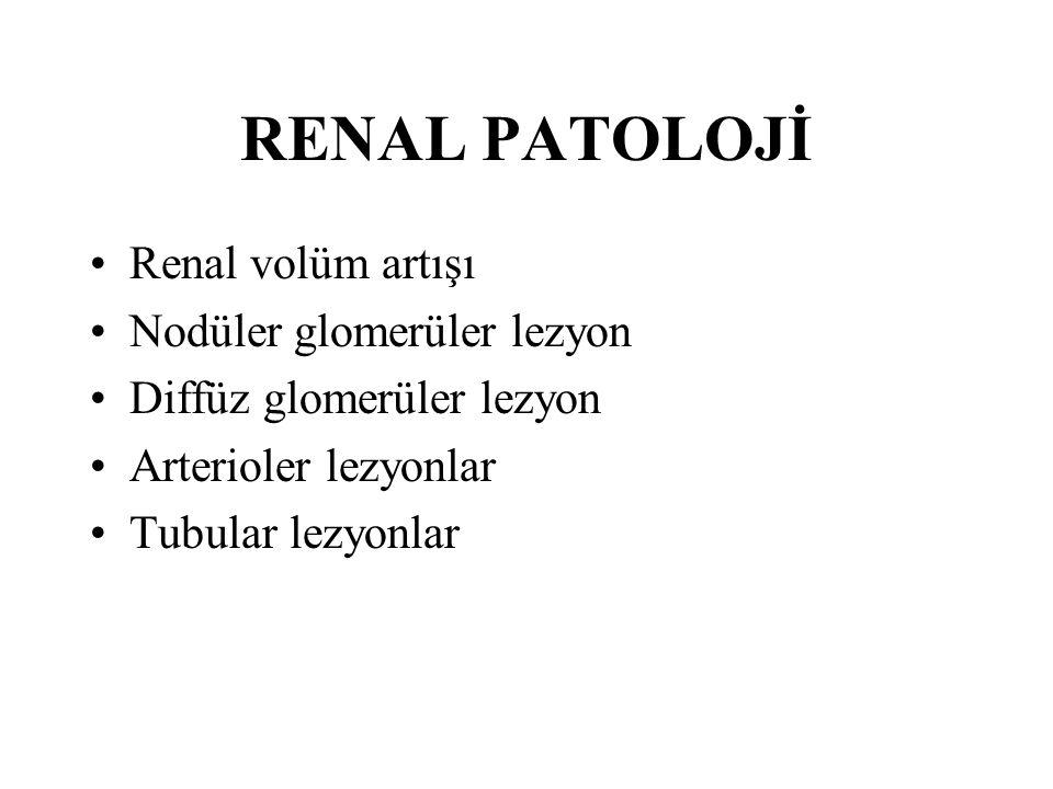 RENAL PATOLOJİ Renal volüm artışı Nodüler glomerüler lezyon Diffüz glomerüler lezyon Arterioler lezyonlar Tubular lezyonlar