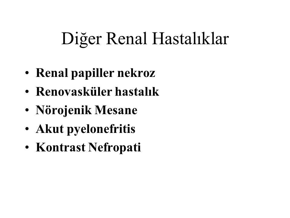 Diğer Renal Hastalıklar Renal papiller nekroz Renovasküler hastalık Nörojenik Mesane Akut pyelonefritis Kontrast Nefropati