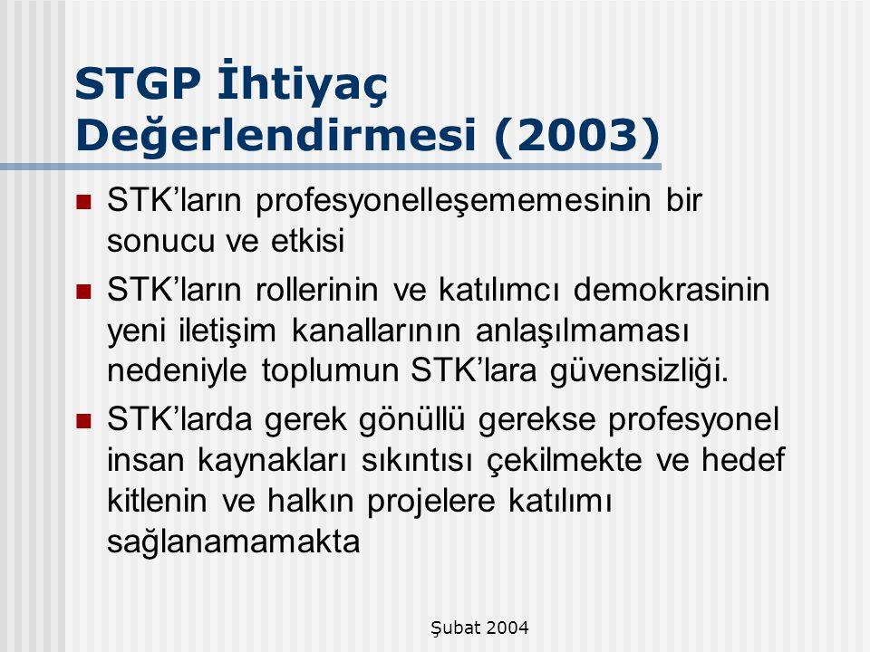 Şubat 2004 STK'ların profesyonelleşememesinin bir sonucu ve etkisi STK'ların rollerinin ve katılımcı demokrasinin yeni iletişim kanallarının anlaşılma