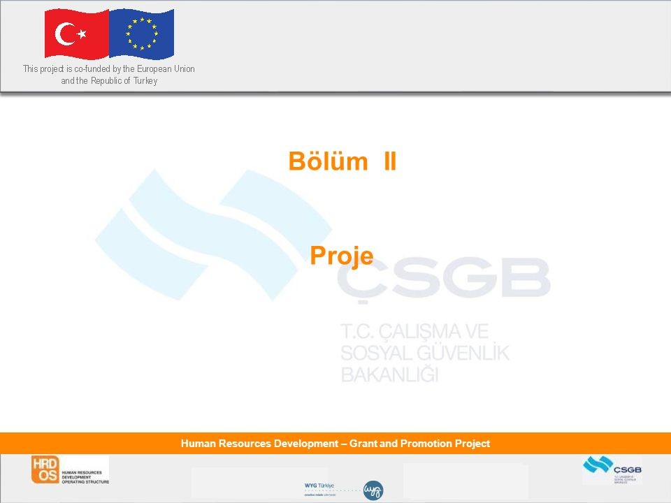 Human Resources Development – Grant and Promotion Project Bölüm II Proje