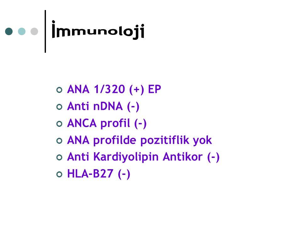 ANA 1/320 (+) EP Anti nDNA (-) ANCA profil (-) ANA profilde pozitiflik yok Anti Kardiyolipin Antikor (-) HLA-B27 (-)