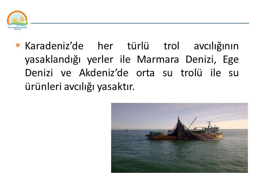Balıkçılık ve Su Ürünleri Genel Müdürlüğü  Karadeniz'de her türlü trol avcılığının yasaklandığı yerler ile Marmara Denizi, Ege Denizi ve Akdeniz'de o