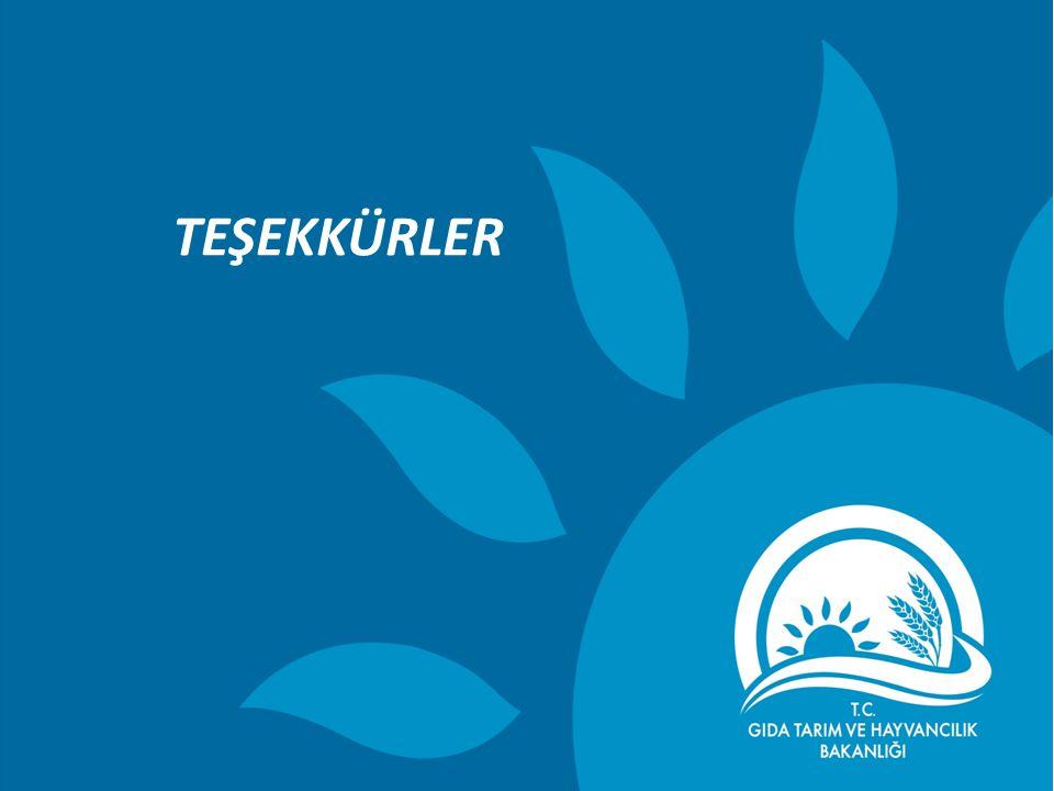 Balıkçılık ve Su Ürünleri Genel Müdürlüğü 37 TEŞEKKÜRLER