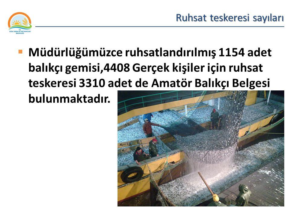 Balıkçılık ve Su Ürünleri Genel Müdürlüğü Ruhsat teskeresi sayıları  Müdürlüğümüzce ruhsatlandırılmış 1154 adet balıkçı gemisi,4408 Gerçek kişiler iç