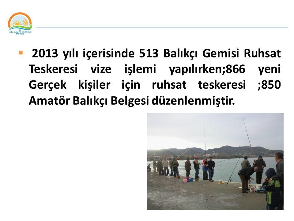 Balıkçılık ve Su Ürünleri Genel Müdürlüğü  2013 yılı içerisinde 513 Balıkçı Gemisi Ruhsat Teskeresi vize işlemi yapılırken;866 yeni Gerçek kişiler iç