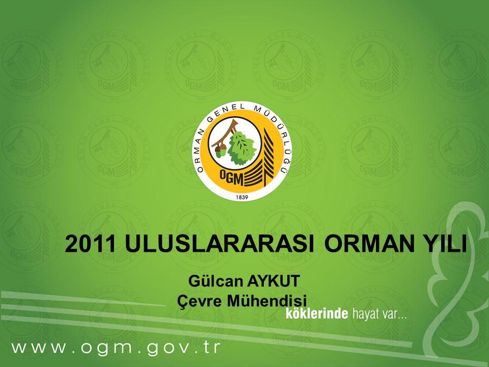 2011 ULUSLARARASI ORMAN YILI Gülcan AYKUT Çevre Mühendisi
