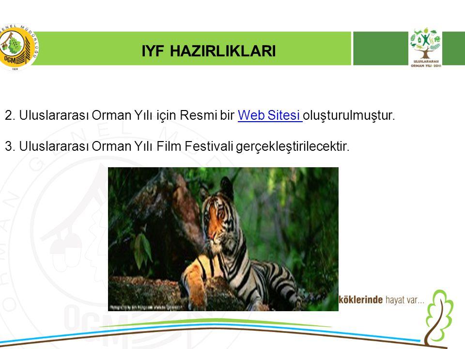 2. Uluslararası Orman Yılı için Resmi bir Web Sitesi oluşturulmuştur.Web Sitesi 3. Uluslararası Orman Yılı Film Festivali gerçekleştirilecektir. IYF H