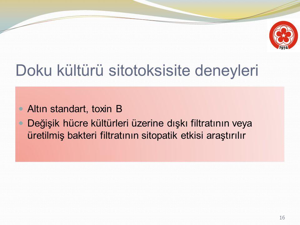 16 Doku kültürü sitotoksisite deneyleri Altın standart, toxin B Değişik hücre kültürleri üzerine dışkı filtratının veya üretilmiş bakteri filtratının
