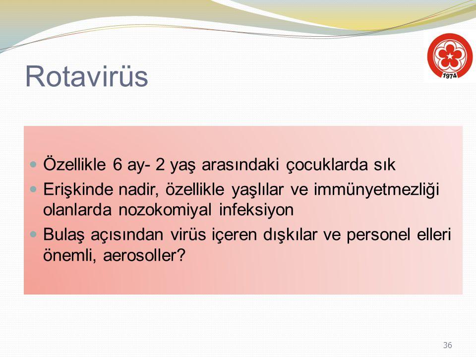 36 Rotavirüs Özellikle 6 ay- 2 yaş arasındaki çocuklarda sık Erişkinde nadir, özellikle yaşlılar ve immünyetmezliği olanlarda nozokomiyal infeksiyon B