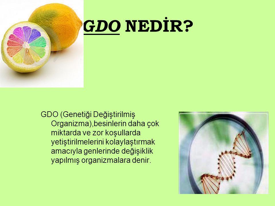 GDO NEDİR? GDO (Genetiği Değiştirilmiş Organizma),besinlerin daha çok miktarda ve zor koşullarda yetiştirilmelerini kolaylaştırmak amacıyla genlerinde