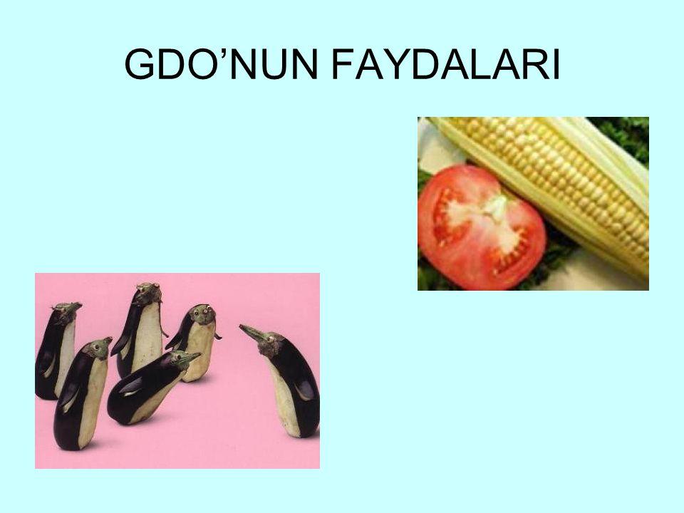 GDO'NUN FAYDALARI