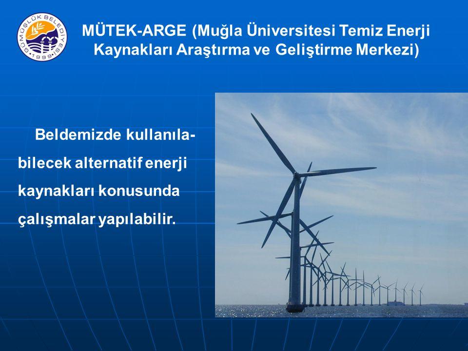 MÜTEK-ARGE (Muğla Üniversitesi Temiz Enerji Kaynakları Araştırma ve Geliştirme Merkezi) Beldemizde kullanıla- bilecek alternatif enerji kaynakları konusunda çalışmalar yapılabilir.