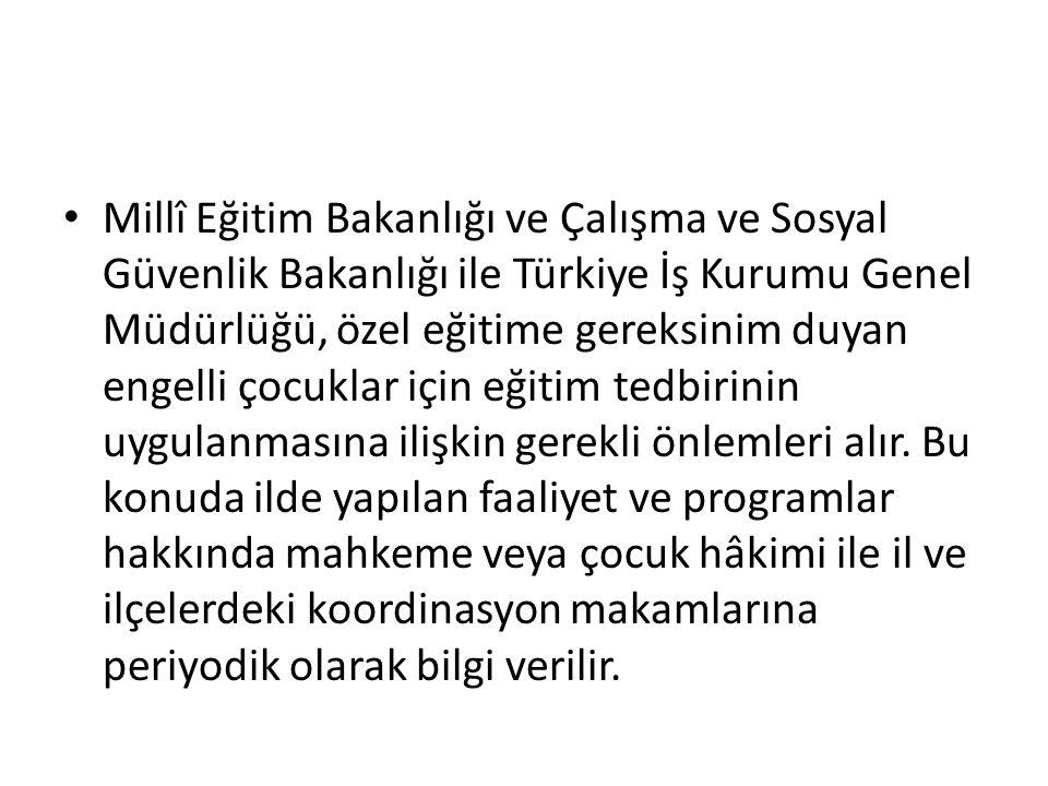 Millî Eğitim Bakanlığı ve Çalışma ve Sosyal Güvenlik Bakanlığı ile Türkiye İş Kurumu Genel Müdürlüğü, özel eğitime gereksinim duyan engelli çocuklar i