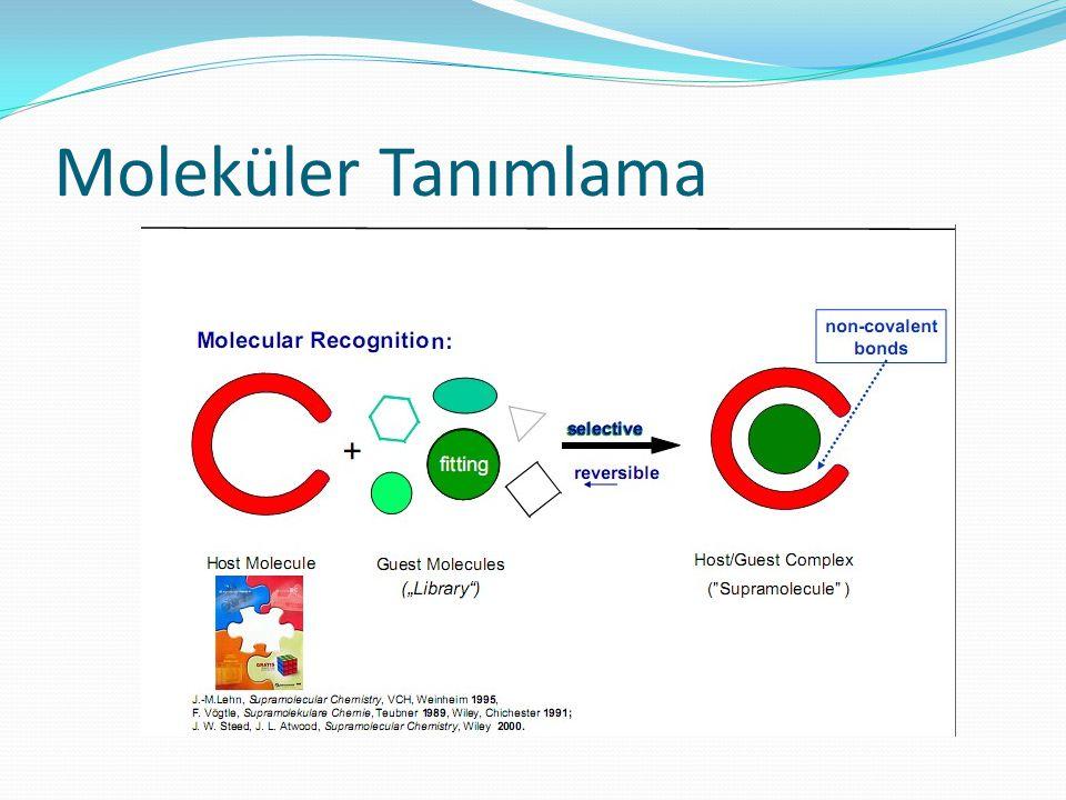 Moleküler Tanımlama