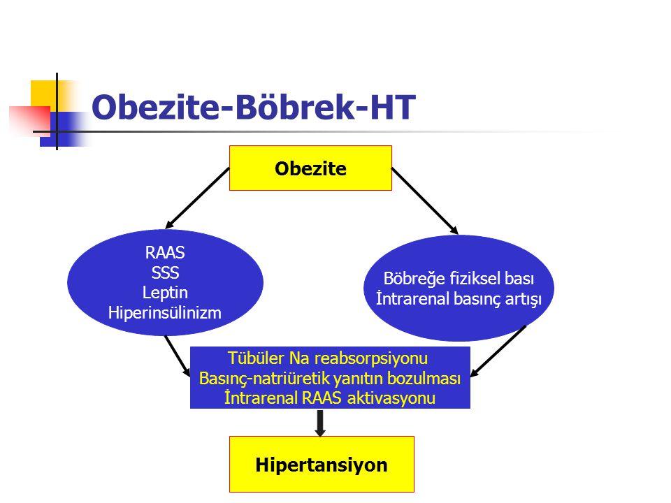 Obezite-Böbrek-HT RAAS SSS Leptin Hiperinsülinizm Obezite Tübüler Na reabsorpsiyonu Basınç-natriüretik yanıtın bozulması İntrarenal RAAS aktivasyonu Hipertansiyon Böbreğe fiziksel bası İntrarenal basınç artışı