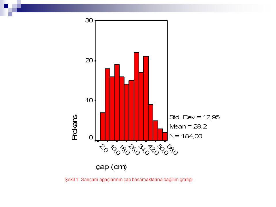 Şekil 2: Sarıçam ağaçlarının boy basamaklarına dağılım grafiği.