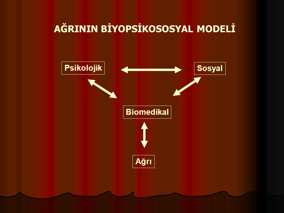 AĞRININ BİYOPSİKOSOSYAL MODELİ Sosyal Biomedikal Psikolojik Ağrı