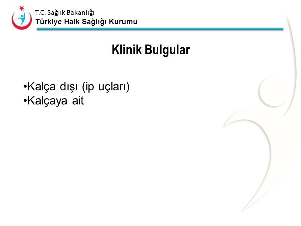 T.C. Sağlık Bakanlığı Türkiye Halk Sağlığı Kurumu Bulgular