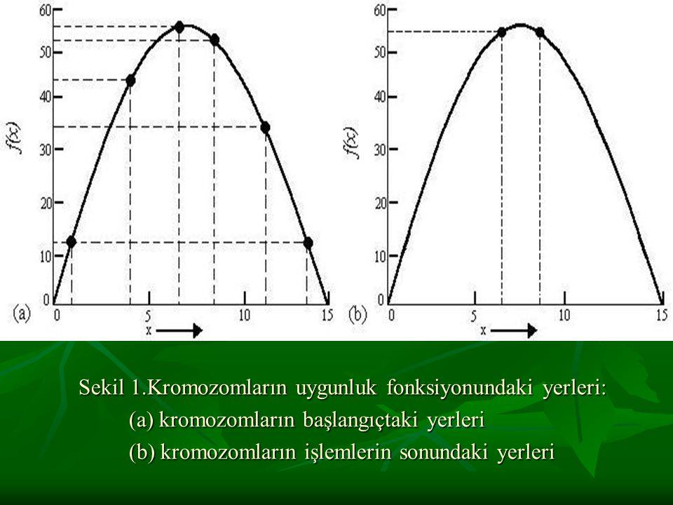 Sekil 1.Kromozomların uygunluk fonksiyonundaki yerleri: (a) kromozomların başlangıçtaki yerleri (a) kromozomların başlangıçtaki yerleri (b) kromozomla
