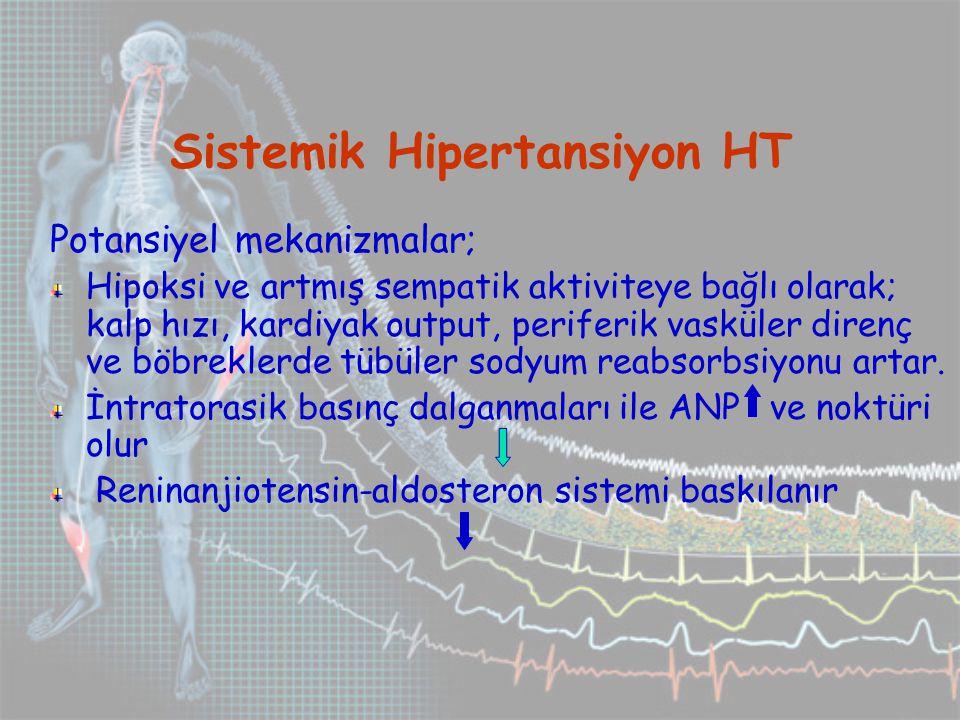 Potansiyel mekanizmalar; Hipoksi ve artmış sempatik aktiviteye bağlı olarak; kalp hızı, kardiyak output, periferik vasküler direnç ve böbreklerde tübüler sodyum reabsorbsiyonu artar.