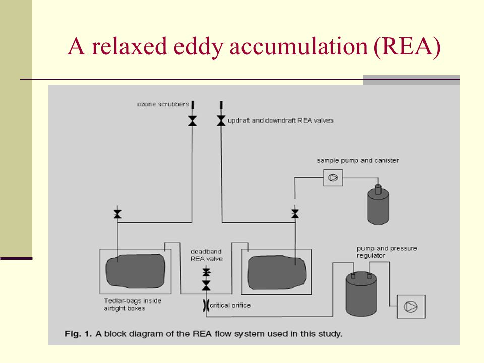 A relaxed eddy accumulation (REA)
