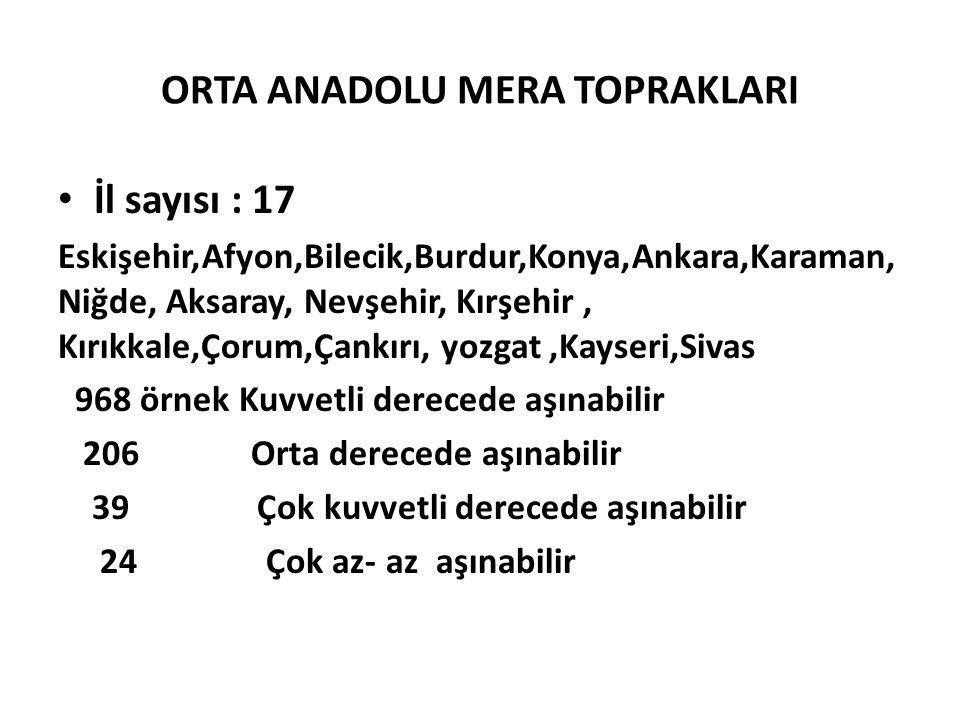 ORTA ANADOLU MERA TOPRAKLARI İl sayısı : 17 Eskişehir,Afyon,Bilecik,Burdur,Konya,Ankara,Karaman, Niğde, Aksaray, Nevşehir, Kırşehir, Kırıkkale,Çorum,Çankırı, yozgat,Kayseri,Sivas 968 örnek Kuvvetli derecede aşınabilir 206 Orta derecede aşınabilir 39 Çok kuvvetli derecede aşınabilir 24 Çok az- az aşınabilir