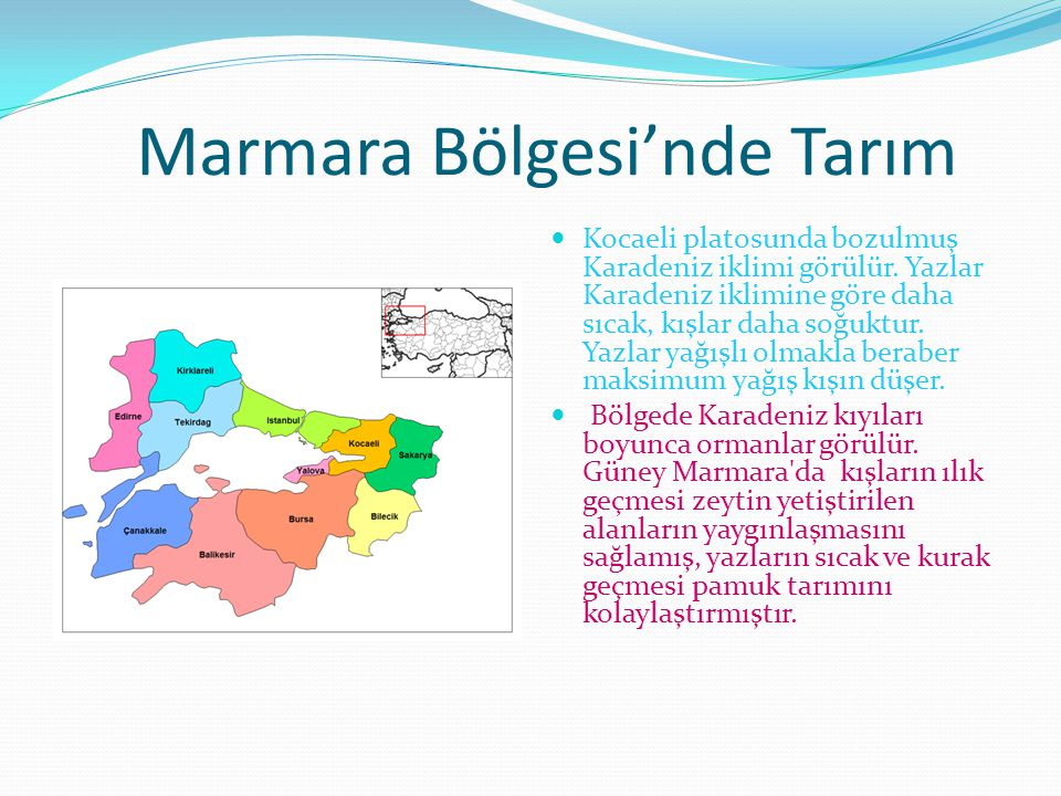Marmara Bölgesi'nde Tarım Kocaeli platosunda bozulmuş Karadeniz iklimi görülür. Yazlar Karadeniz iklimine göre daha sıcak, kışlar daha soğuktur. Yazla