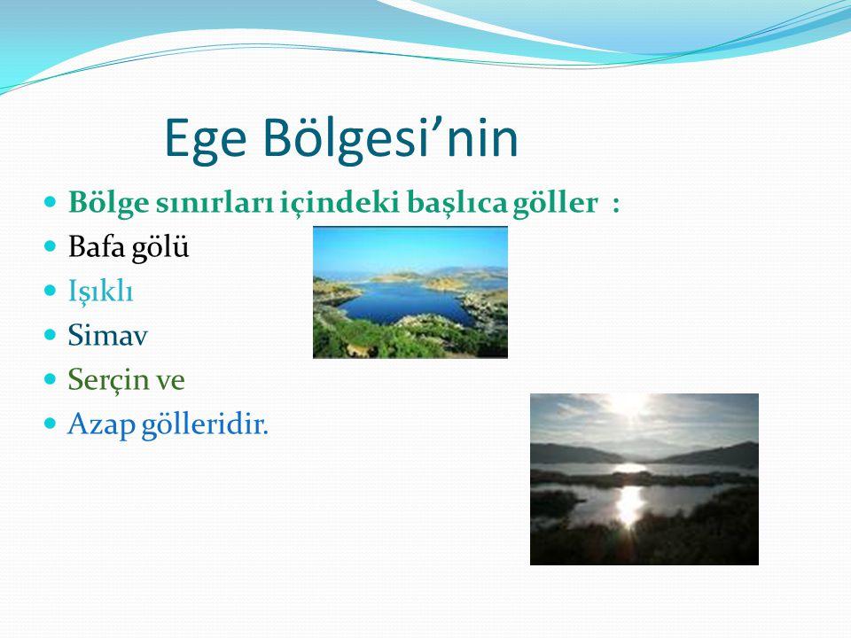 Ege Bölgesi'nin Bölge sınırları içindeki başlıca göller : Bafa gölü Işıklı Simav Serçin ve Azap gölleridir.
