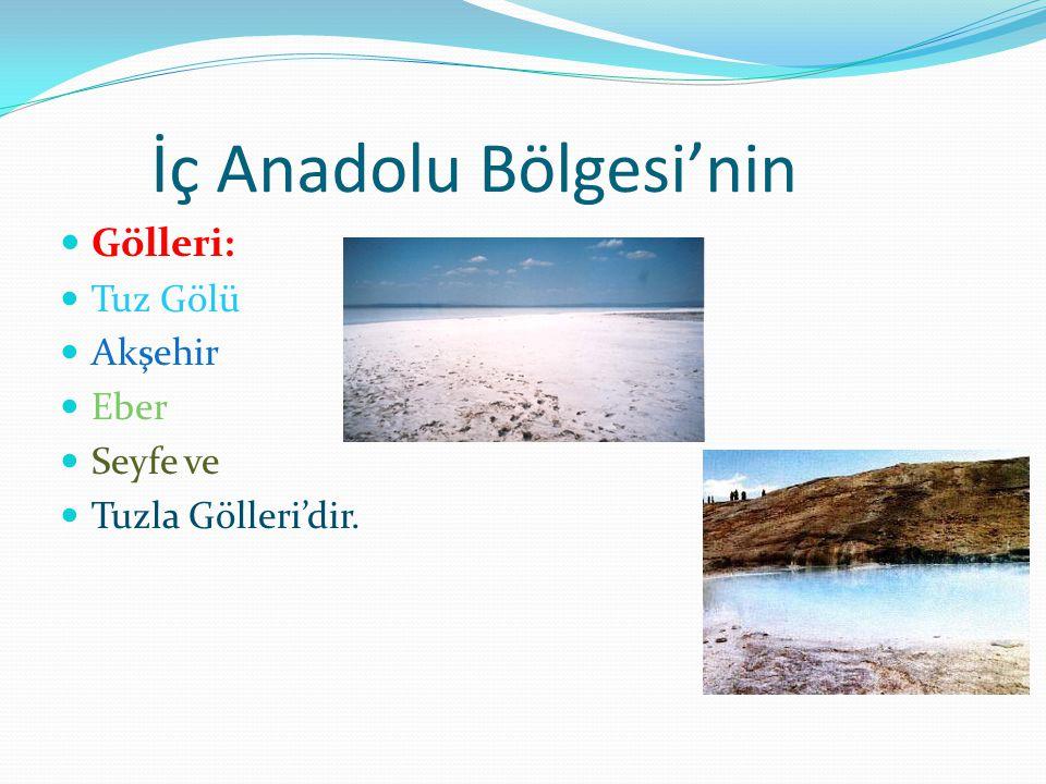 İç Anadolu Bölgesi'nin Gölleri: Tuz Gölü Akşehir Eber Seyfe ve Tuzla Gölleri'dir.