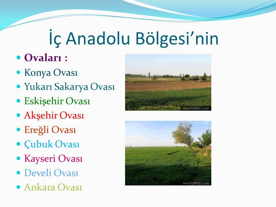 İç Anadolu Bölgesi'nin Ovaları : Konya Ovası Yukarı Sakarya Ovası Eskişehir Ovası Akşehir Ovası Ereğli Ovası Çubuk Ovası Kayseri Ovası Develi Ovası An