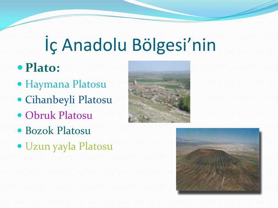 İç Anadolu Bölgesi'nin Plato: Haymana Platosu Cihanbeyli Platosu Obruk Platosu Bozok Platosu Uzun yayla Platosu