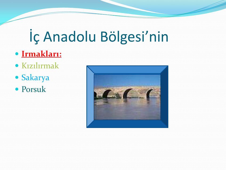 İç Anadolu Bölgesi'nin Irmakları: Kızılırmak Sakarya Porsuk