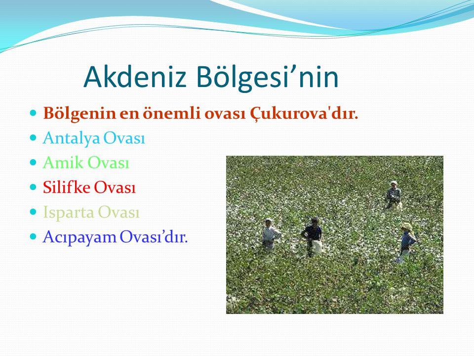 Akdeniz Bölgesi'nin Bölgenin en önemli ovası Çukurova'dır. Antalya Ovası Amik Ovası Silifke Ovası Isparta Ovası Acıpayam Ovası'dır.