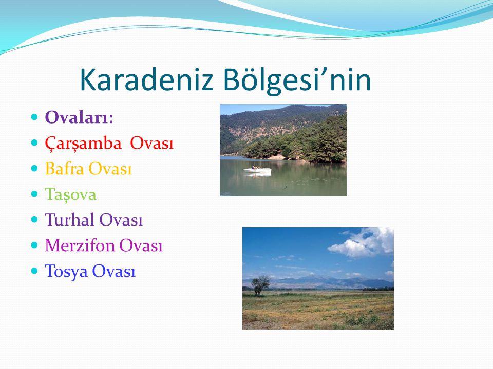 Karadeniz Bölgesi'nin Ovaları: Çarşamba Ovası Bafra Ovası Taşova Turhal Ovası Merzifon Ovası Tosya Ovası