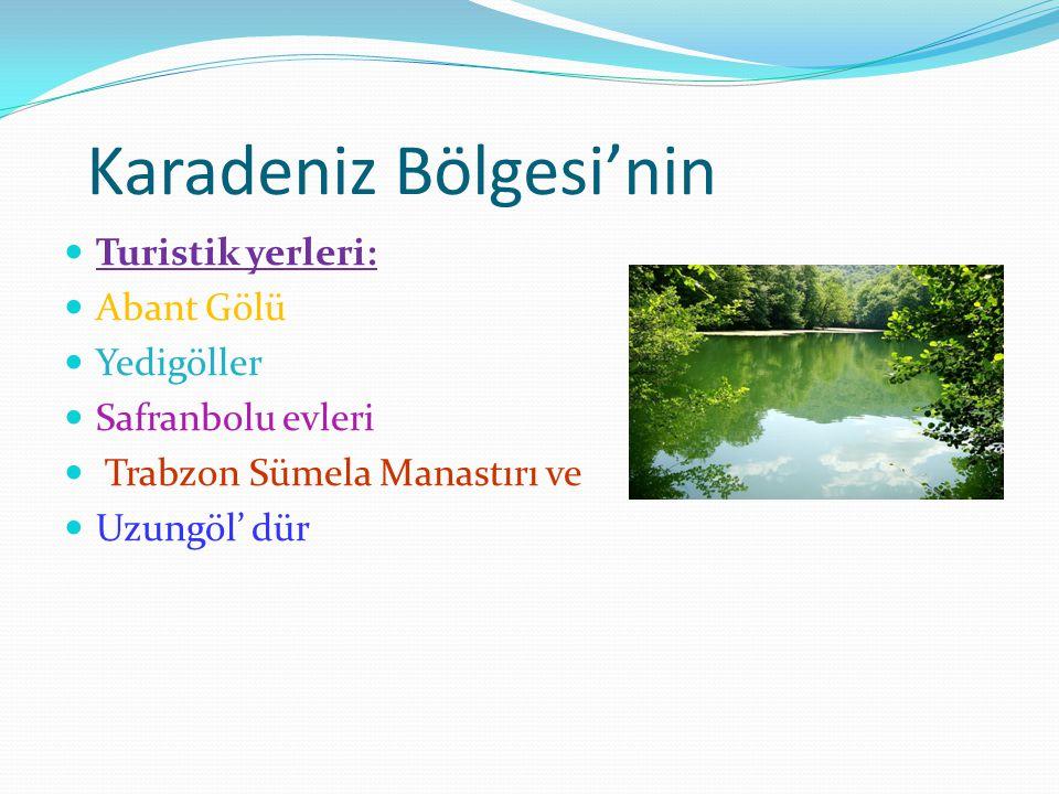 Karadeniz Bölgesi'nin Turistik yerleri: Abant Gölü Yedigöller Safranbolu evleri Trabzon Sümela Manastırı ve Uzungöl' dür
