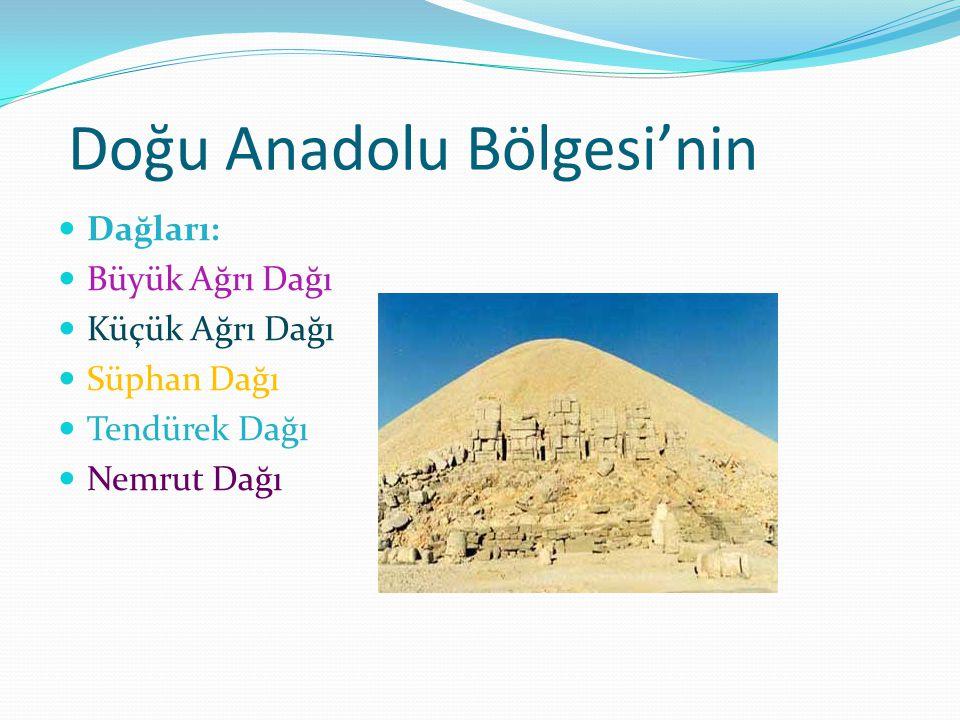 Doğu Anadolu Bölgesi'nin Dağları: Büyük Ağrı Dağı Küçük Ağrı Dağı Süphan Dağı Tendürek Dağı Nemrut Dağı
