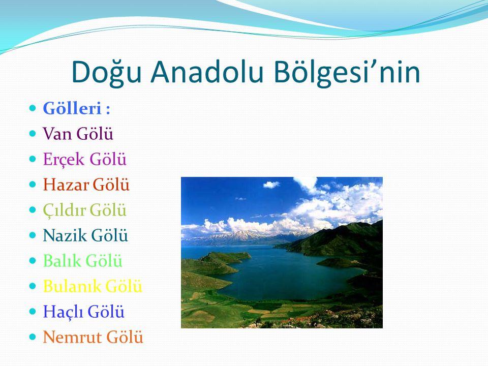 Doğu Anadolu Bölgesi'nin Gölleri : Van Gölü Erçek Gölü Hazar Gölü Çıldır Gölü Nazik Gölü Balık Gölü Bulanık Gölü Haçlı Gölü Nemrut Gölü