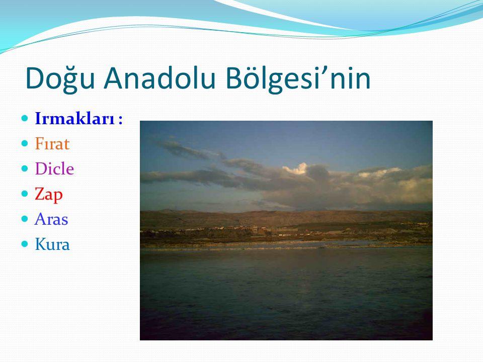 Doğu Anadolu Bölgesi'nin Irmakları : Fırat Dicle Zap Aras Kura