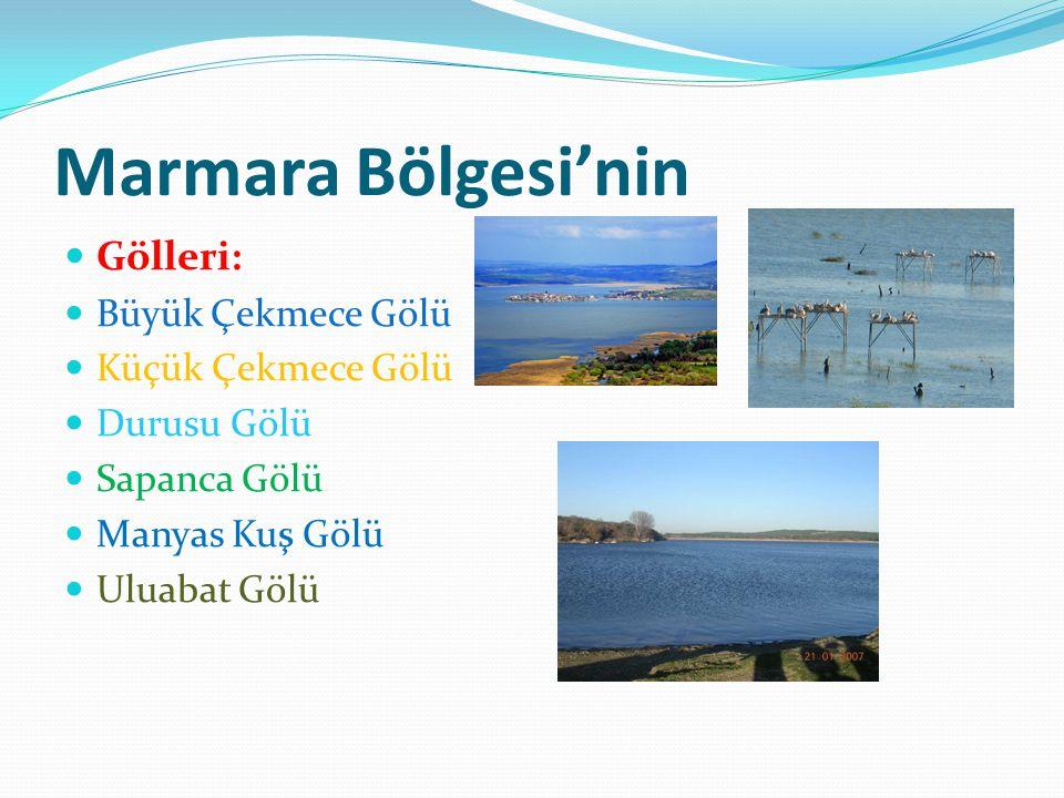 Marmara Bölgesi'nin Gölleri: Büyük Çekmece Gölü Küçük Çekmece Gölü Durusu Gölü Sapanca Gölü Manyas Kuş Gölü Uluabat Gölü