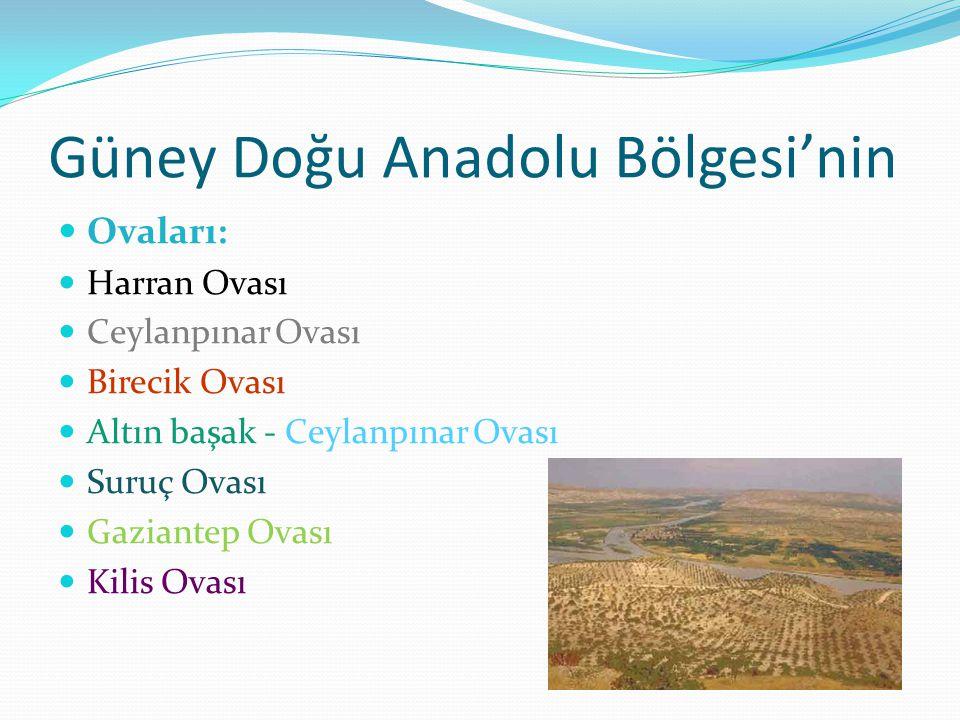 Güney Doğu Anadolu Bölgesi'nin Ovaları: Harran Ovası Ceylanpınar Ovası Birecik Ovası Altın başak - Ceylanpınar Ovası Suruç Ovası Gaziantep Ovası Kilis Ovası