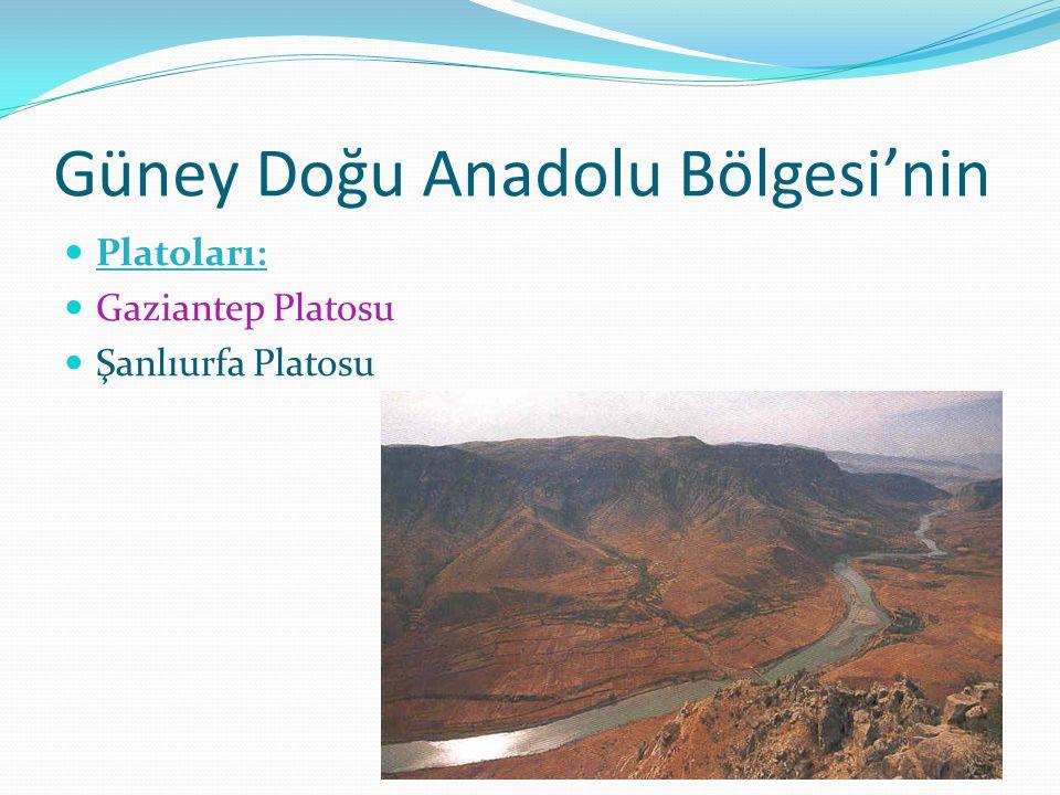 Güney Doğu Anadolu Bölgesi'nin Platoları: Gaziantep Platosu Şanlıurfa Platosu