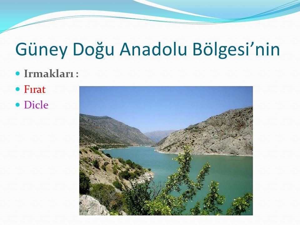Güney Doğu Anadolu Bölgesi'nin Irmakları : Fırat Dicle