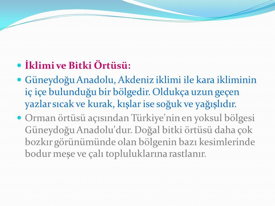 İklimi ve Bitki Örtüsü: Güneydoğu Anadolu, Akdeniz iklimi ile kara ikliminin iç içe bulunduğu bir bölgedir. Oldukça uzun geçen yazlar sıcak ve kurak,