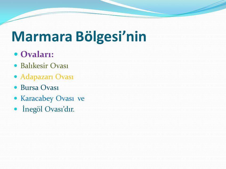 Marmara Bölgesi'nin Ovaları: Balıkesir Ovası Adapazarı Ovası Bursa Ovası Karacabey Ovası ve İnegöl Ovası'dır.