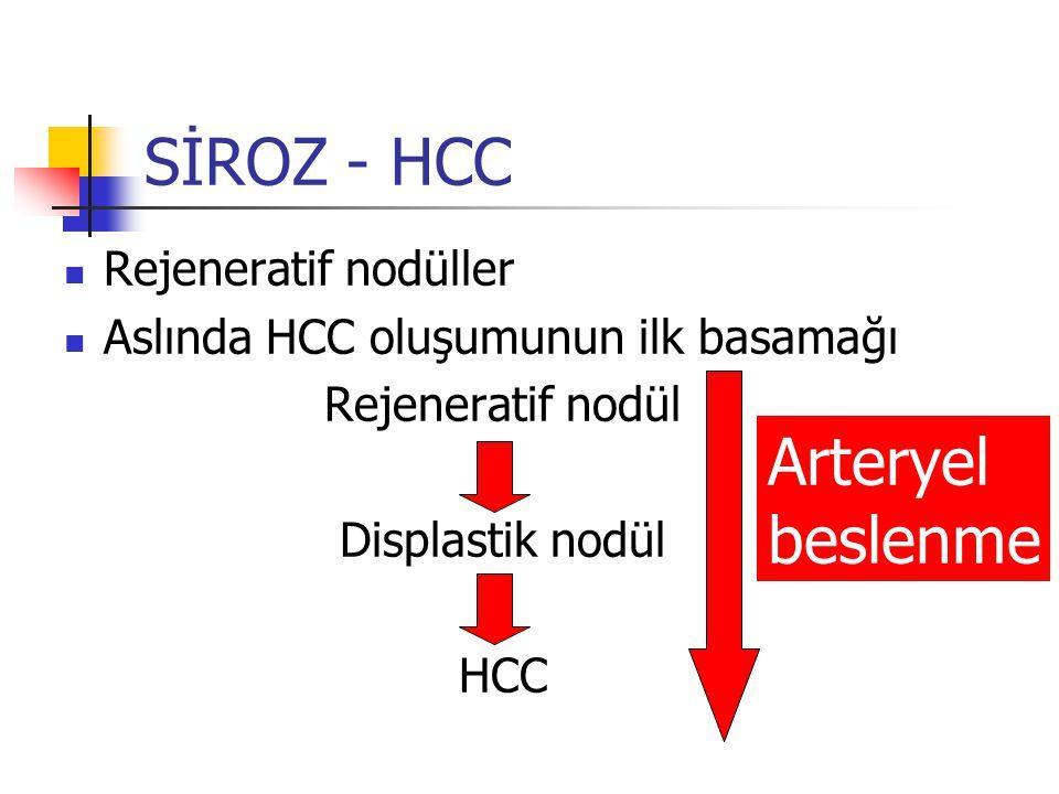 Rejeneratif nodüller Aslında HCC oluşumunun ilk basamağı Rejeneratif nodül Displastik nodül HCC SİROZ - HCC Arteryel beslenme