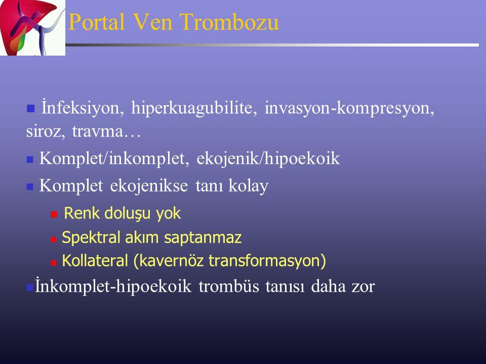 Portal Ven Trombozu İnfeksiyon, hiperkuagubilite, invasyon-kompresyon, siroz, travma… Komplet/inkomplet, ekojenik/hipoekoik Komplet ekojenikse tanı ko