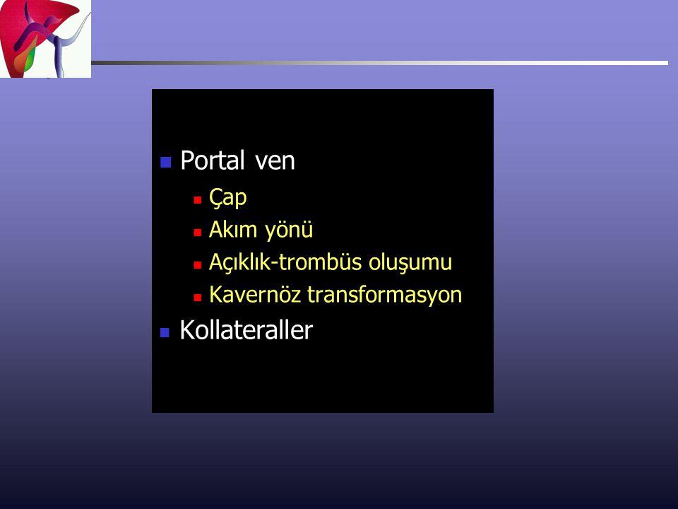 Portal ven Çap Akım yönü Açıklık-trombüs oluşumu Kavernöz transformasyon Kollateraller