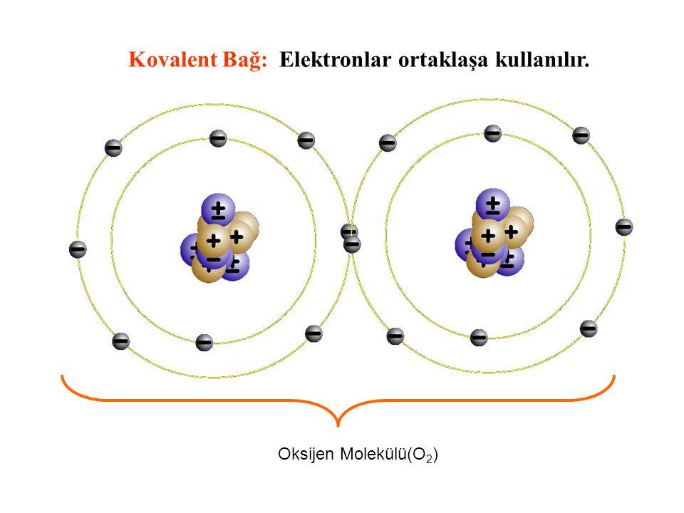 Oksijen Molekülü(O 2 ) Kovalent Bağ: Elektronlar ortaklaşa kullanılır.